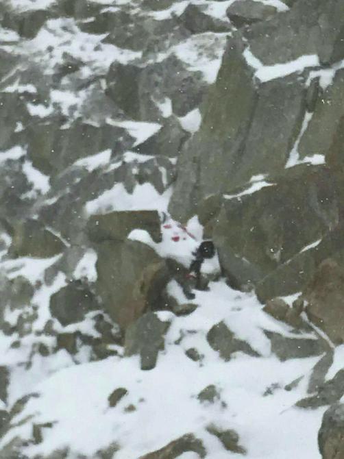 令人痛心:跌落悬崖,遇难女子已被大雪覆盖。   (四姑娘山景区供图)