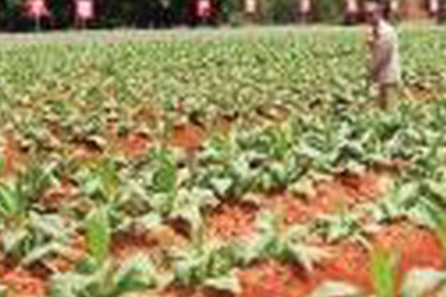 到2020年 四川农民生活全面小康