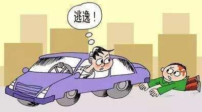 阆中司机撞人致死后逃逸 交警全城围堵