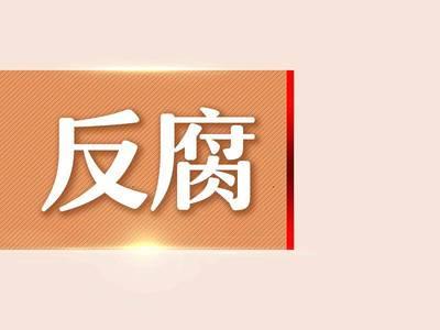 攀枝花市花城新区党工委副书记、管委会主任 龙小强接受纪律审