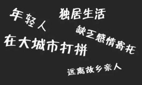 四川空巢青年近半在成都 仅4%表示没压力