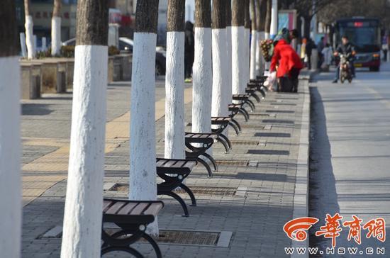 300米街道安54个椅子 官方:净化环境