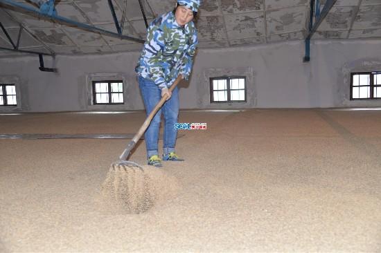 一个人的坚守 四川通江女粮管员20年守护粮食6600万斤