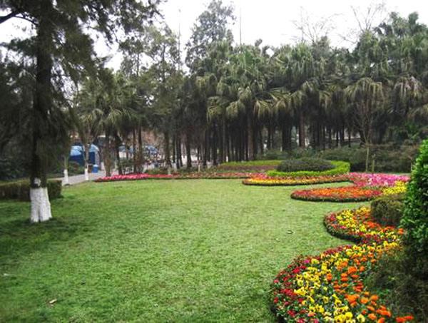 打造2700平方米春花景观 成都动物园走起鲜花路线