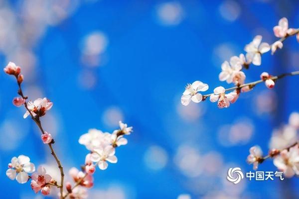 寒潮难挡入春脚步 周末回暖宜出游