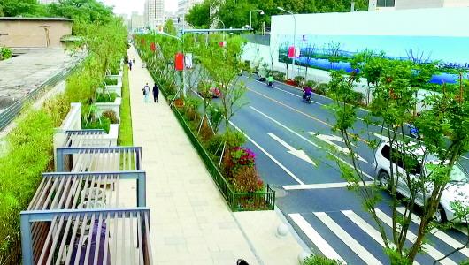 济南创城成功后城市管理将常态化 十大重点持续进行