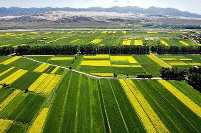 耕种收机械化率明年将达88.5%