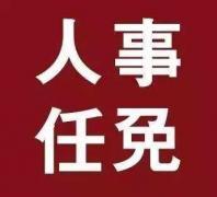 青岛、滨州、菏泽市政府发布一批人事任免通知