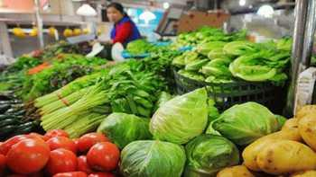 菜价继续保持稳定:市场供应充足 交易量持续增加
