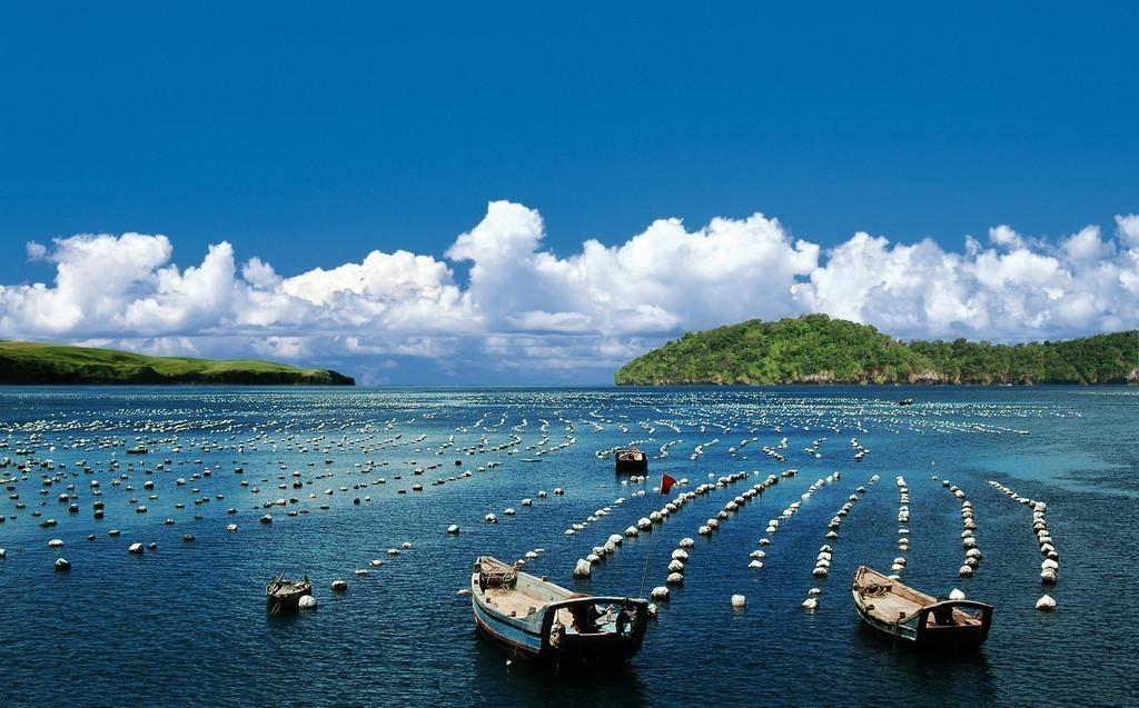 山东首家5G海洋牧场落户荣成 迈向现代渔业发展