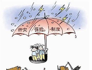 山东台风灾后理赔全面提速 已赔付19958件 5765万元