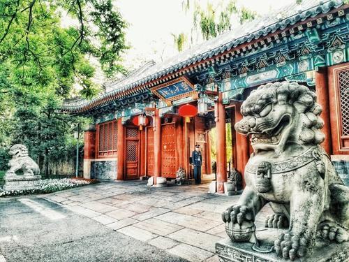 山东高分考生选大学更看重地域 北京 上海高校最受欢迎