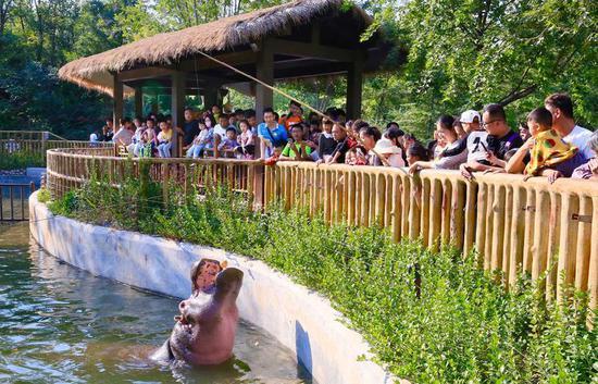 济南野生动物世界迎来众多游客