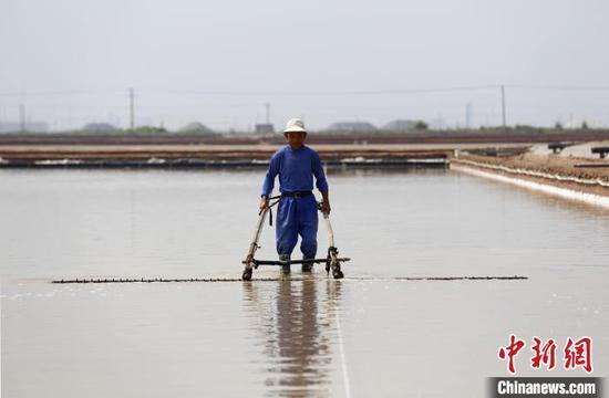 探秘山东产盐基地 海盐年产量占中国市场七成以上