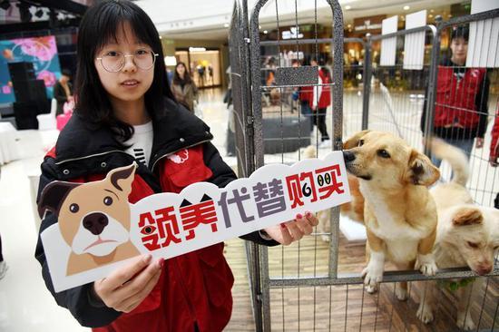 """来自青岛农业大学的志愿者在活动现场宣传""""领养代替购买""""理念。"""