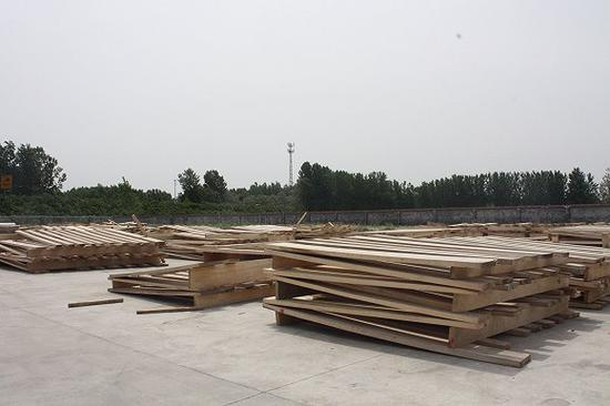 云龙木雕厂车间外晾晒着大批桐木。图片来源:杨立赟