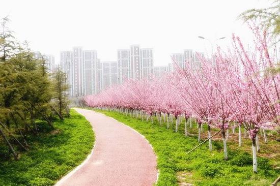 """东营区综合行政执法局下足""""绣花""""功夫"""