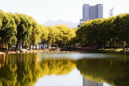 13个招生专业!青岛城市学院2021专升本招生1100人(附自荐生专业综合能力测试方案)