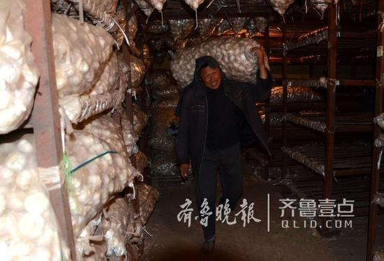 一家冷库内,工人们在搬运大蒜。