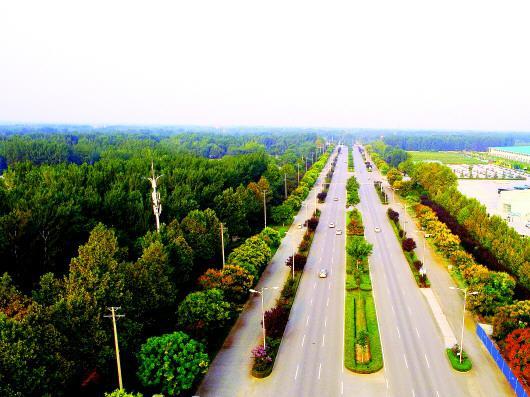 图为聊城市黄河路。