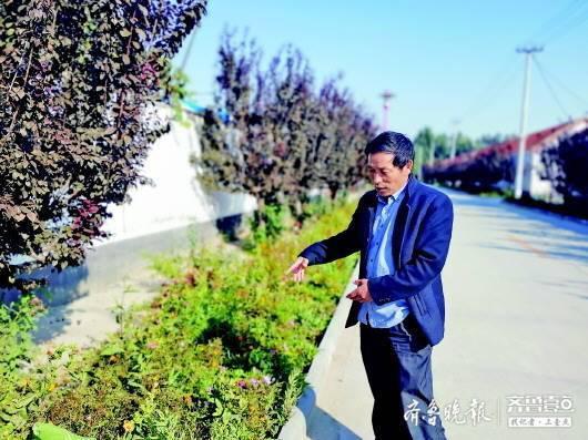 村容村貌为之一变 山东东营广饶县封庙村实施雨污分流垃圾分类