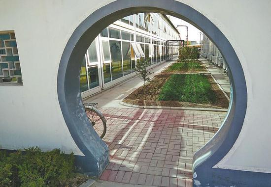 中铁十四局济南黄河隧道工地的小菜园。(戴升宝 摄)