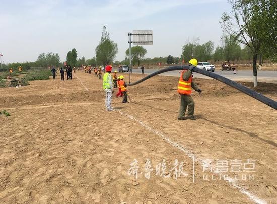 花海将有喷灌工人们正在布设管道。
