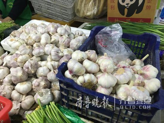 济南市棋盘街菜市场内,鲜净蒜(右)卖2元到3元不等。