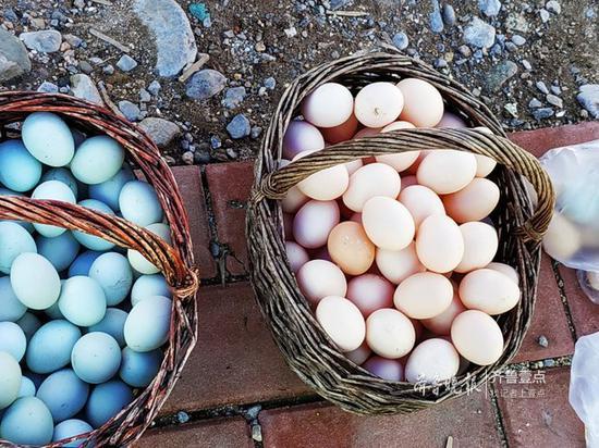 农村大集上的山鸡蛋也由每斤8.5元左右降至7元