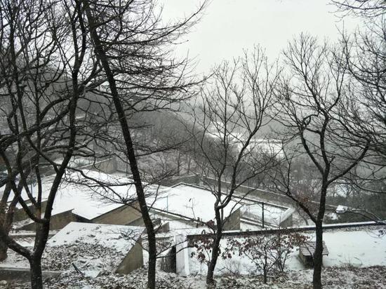沂蒙山龟蒙景区已经下起了鹅毛大雪