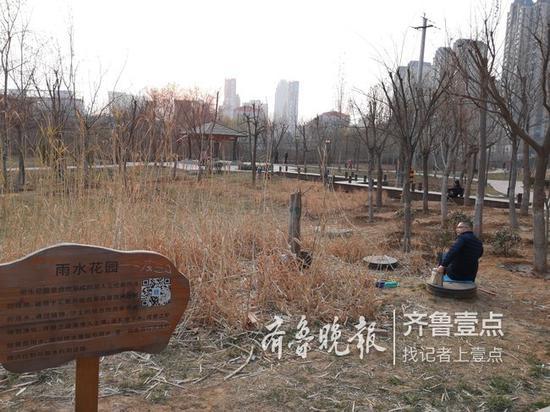 附近居民盼望大辛河常年流水,而且再有亲水平台就好了。