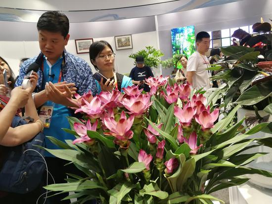 http://www.edaojz.cn/xiuxianlvyou/145662.html