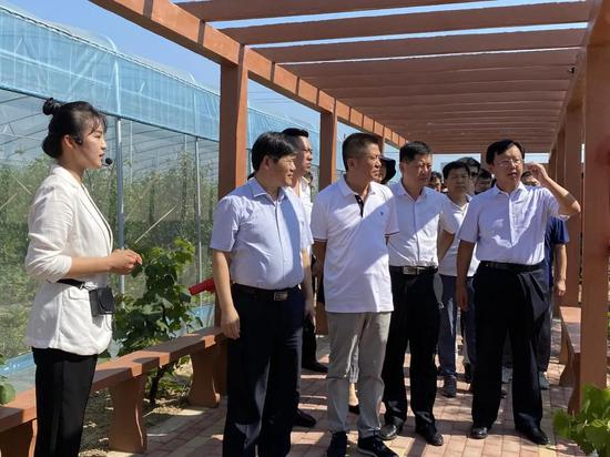 致公党滨州市二支部到沾化区调研冬枣产业发展情况