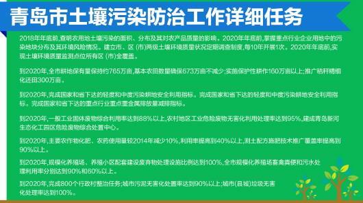 半岛全媒体记者 王媛 实习生 宫优美 报道