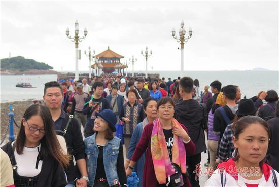 8日是国庆长假的最后一天。濛濛细雨并没有阻挡游人的脚步,栈桥上依然游客如织。王雷摄