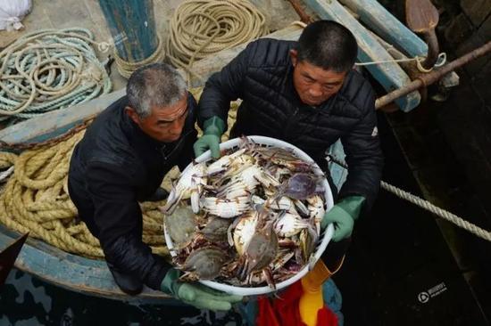 在海鲜市场,渔民正在搬运梭子蟹。