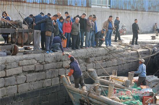 2017年11月12日,市民在青岛市小港码头选购种类丰富、价格低廉的新鲜海货。