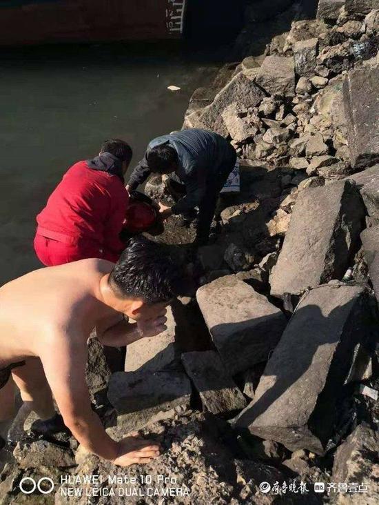 烟台一女子海边洗鱼不慎落水 他跳入冰冷海中救人