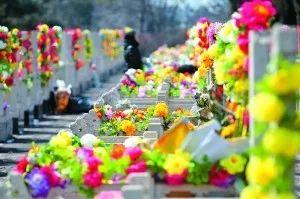 在扫墓祭奠亲人的时候