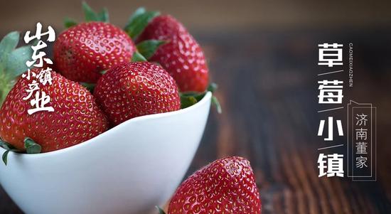 济南历城的草莓究竟有多甜甜甜甜甜 来了就知道了