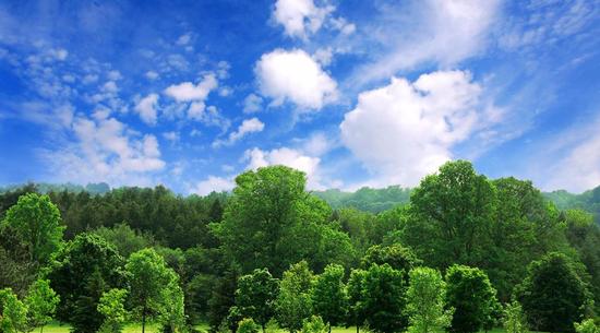 山东发布《2019年山东省生态环境状况公报》