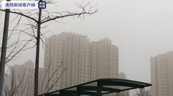 山东多地发布大雾黄色预警 交通出行受影响