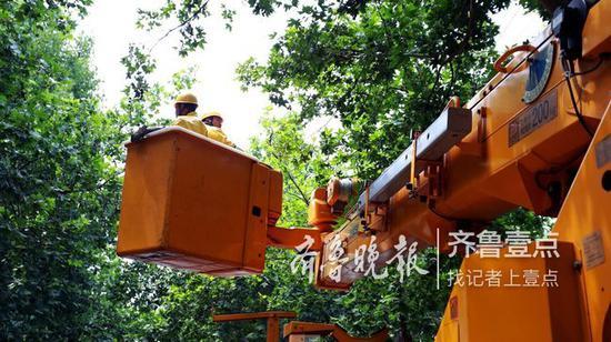 他们这次的任务是为杨兰村新上的一台变压器完成接线。