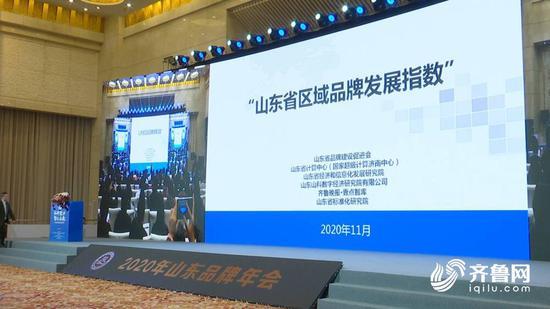 山东省区域品牌发展指数发布:济青领衔 8市超平均值