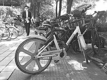 自行车占据着盲道。首席记者程凌润摄
