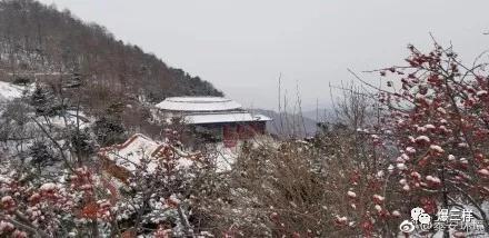 泰山上也降雪啦!
