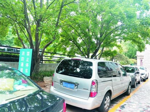 齐鲁医院停车场趋于饱和,不少车几乎停到了医院门前