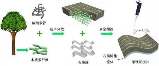 ▲用木质素研发高性能锂硫电池示意图