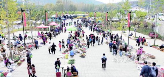 受红叶游拉动,黄沙埠村形成了山货市场。齐鲁晚报·齐鲁壹点记者王杰摄
