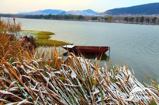 山东昨日13地市都下雪了 菏泽下得最大